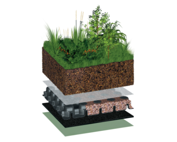 Intensive Green Roof System | Bimstore