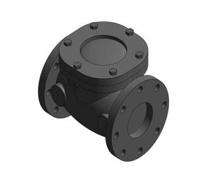 Product: F493 - Swing Check Valve