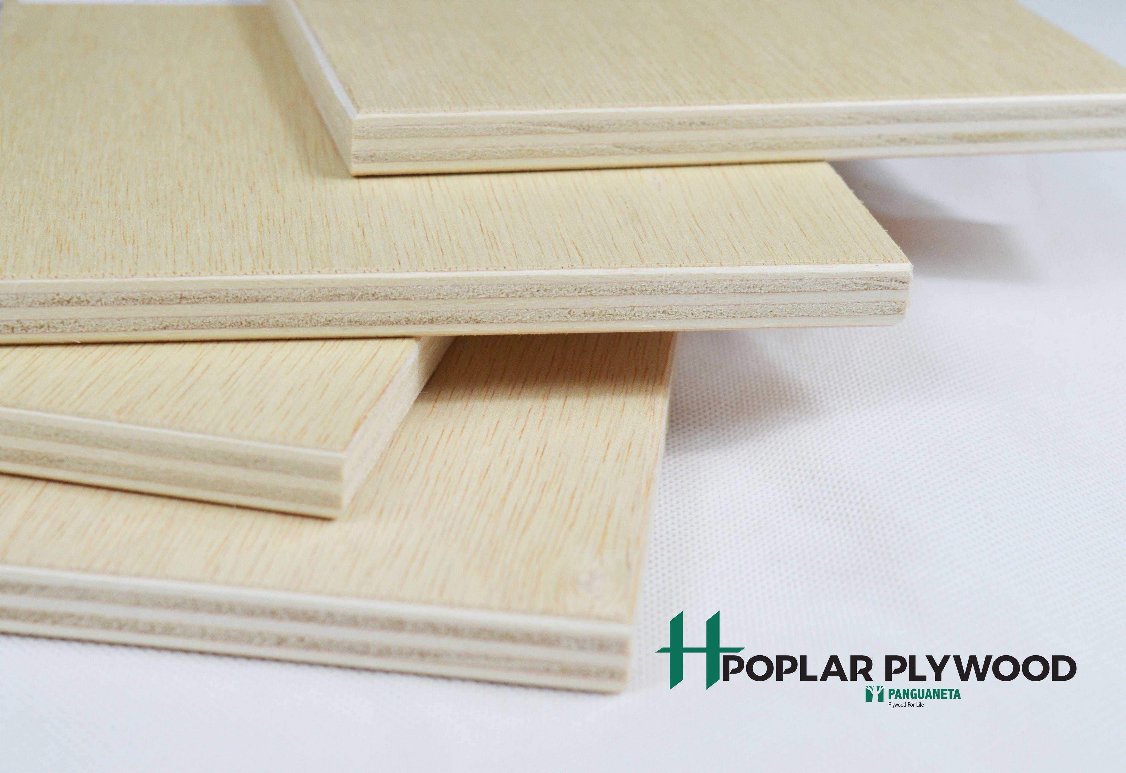 Product: Ilomba Faced Poplar Plywood