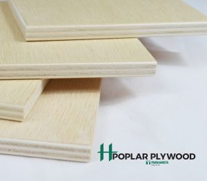 Product: Ilomba Faced Poplar Plywood