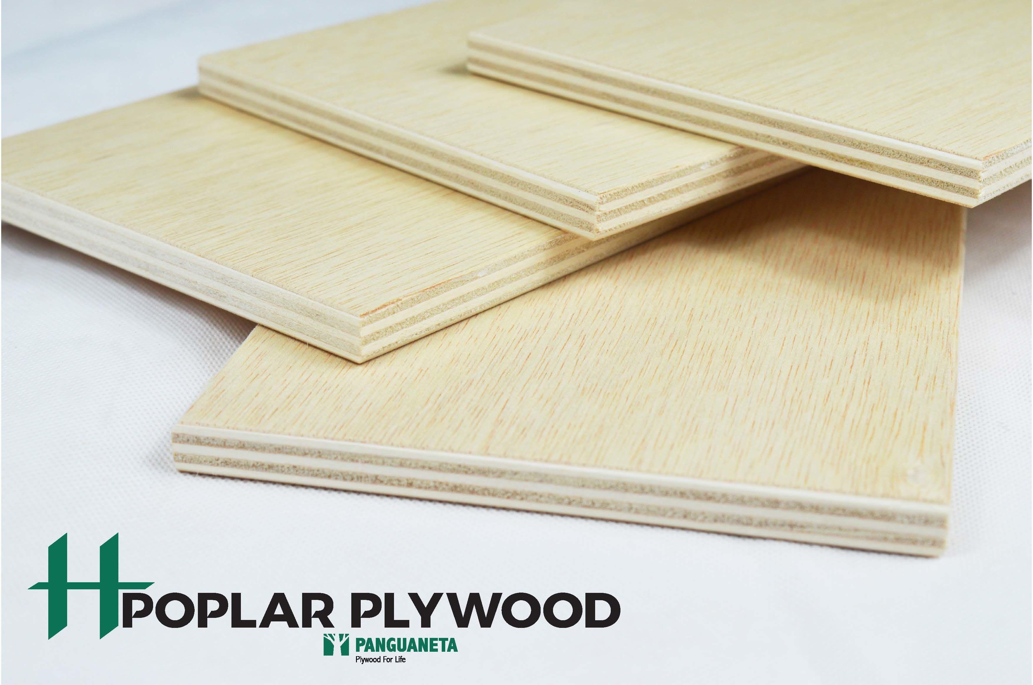 Product: Poplar Plywood