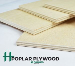 Product: Poplar Plywood