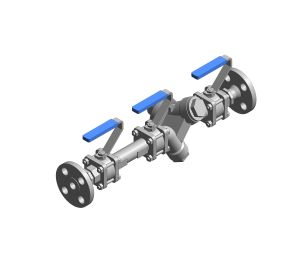Product: Double Upstream Isolation Steam Trapping Station - Flange
