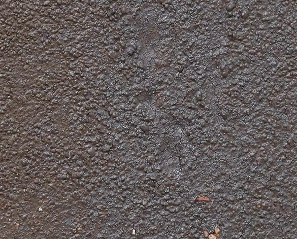 Product: Ammonit Pelaris Pecan Brown